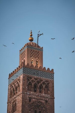 Huge flock of storks flying around the minaret of the Koutoubia mosque in the medina of Marrakech, Morocco. Captured during sunset in twilight. 版權商用圖片