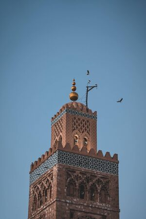 Huge flock of storks flying around the minaret of the Koutoubia mosque in the medina of Marrakech, Morocco. Captured during sunset in twilight. Photo taken in Morocco.