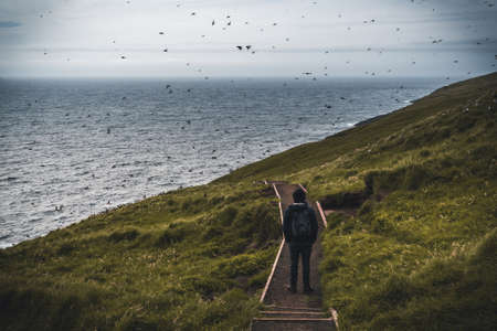 Young man tourist traveler standing between puffins at the Mykines Island, part of the Faroe Islands in the North Atlantic ocean.