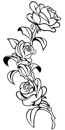 koi: Handmade Rose Design Vector Tattoo Illustration