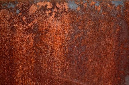 roasted texture