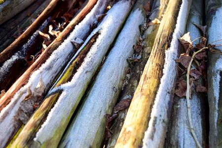 Frozen Wood in the Winter