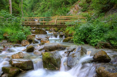 valais: Small Stream in the Forest