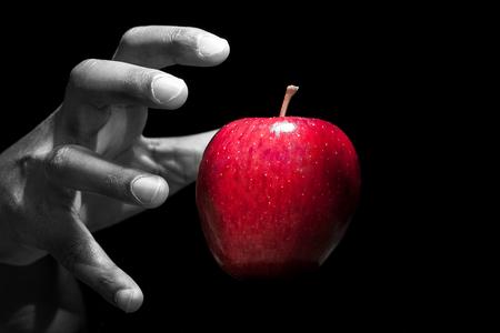 Mano alcanzando una manzana roja, la fruta prohibida, en fondo negro. Foto de archivo