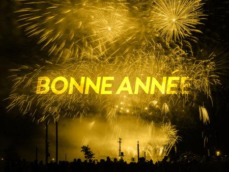 Bonne annee card on a golden fireworks background