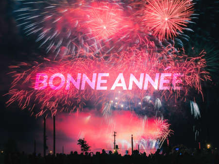 Bonne annee card on a red fireworks background