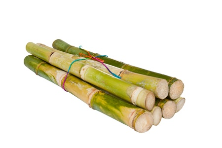 Bunch of fresh sugar cane in white background Stock Photo - 11273343