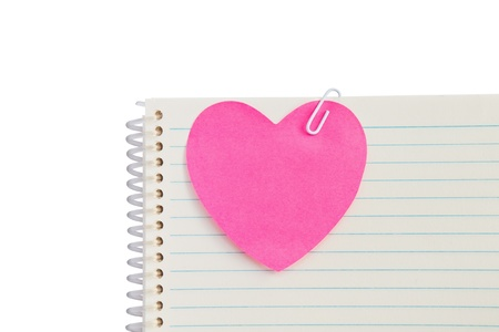 Clip on pink heart with notebook