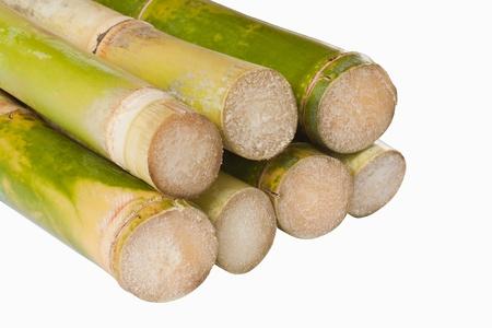 Bunch of fresh sugar cane in white background