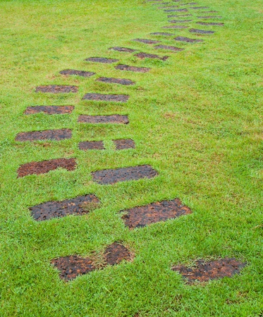Brown Stone path into the green grass Stock Photo - 13562453