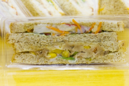 Homemade sandwich in plastic package