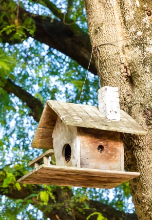 Old wooden birdhouse tied into the tree photo