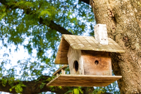 nailed: Old wooden birdhouse tied into the tree