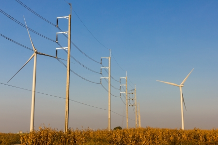 Wind turbines with transmission lines and field photo