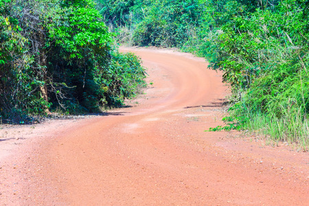 s curve: S curve road in Asian forest