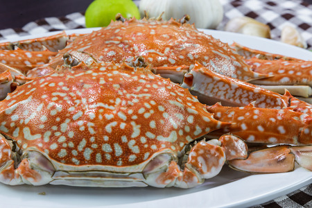 blue swimmer crab: Close up of streamed blue crabs  sand crab Stock Photo