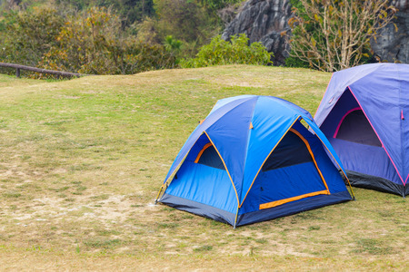 Dome tent on green grass in national park Stock Photo