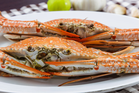 blue swimmer crab: Close up face of streamed blue crabs  sand crab Stock Photo