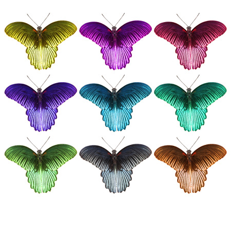 forewing: Isolated colorful great mormon butterfly Stock Photo
