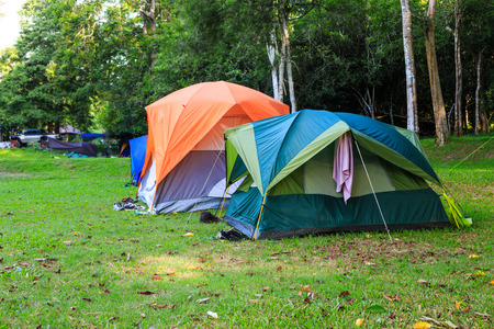 camping tent: Dome tents of tourist in forest camping site Stock Photo