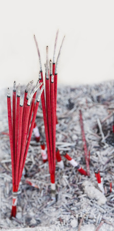 incense sticks: Red burned Incense sticks