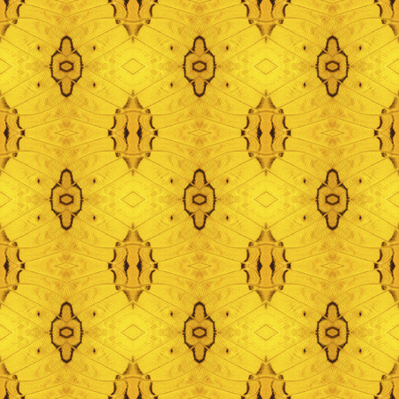 Pattern texture from orange common cruiser butterfly wing for background
