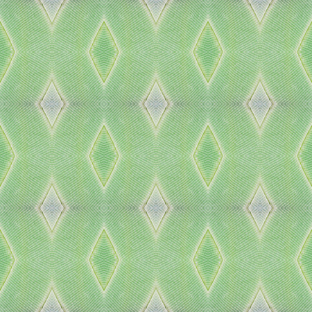 Seamless pattern made from colorful butterfly wing for background texture , common nawab Stock Photo