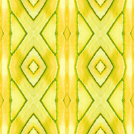 Seamless pattern made from colorful butterfly wing scale for background texture , yellow coster
