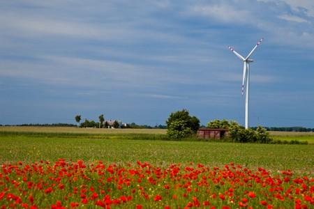 Poppy field meadow with wind turbine Stock Photo - 7267257