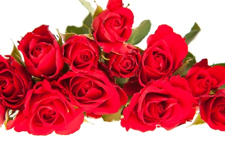 Red roses on white isolated background valentines day photo