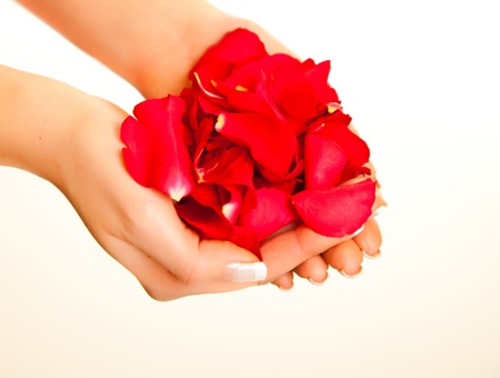 Red rose petals in womans hand isolated on white photo