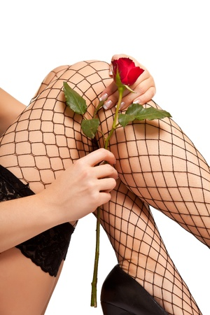 Woman legs in fishnet and rose Stock Photo - 8611831