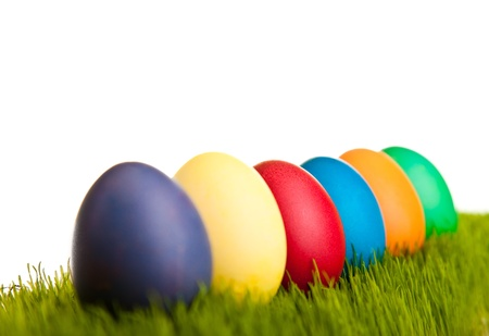 Easter eggs and chickens on green grass on white isolated background Stock Photo - 8819206