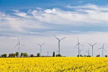 powerplants: Wind powerplants countryside Stock Photo
