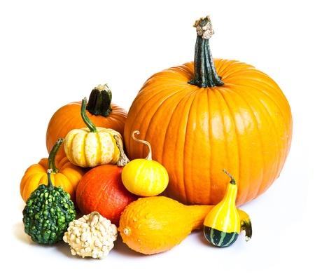 dynia: Dojrzałych owoców Zjadacz samodzielnie na białym tle