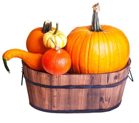Ripe pumpkin fruits isolated on white photo