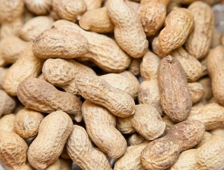 Peanuts 写真素材