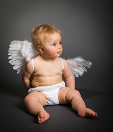 cherub: Infant baby with angel wings on neutral background