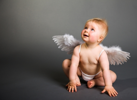 baby angel: Infant baby with angel wings on neutral background