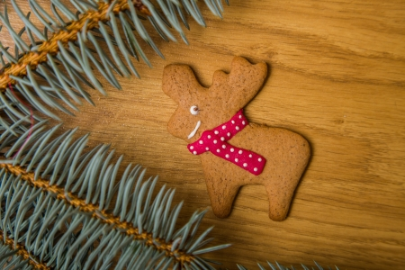Decorated homemade gingerbread cookies  photo