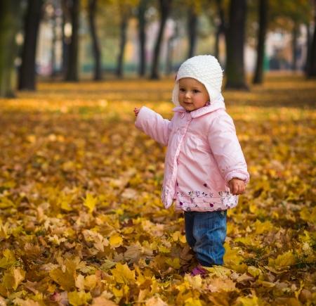 Child in autumn park photo
