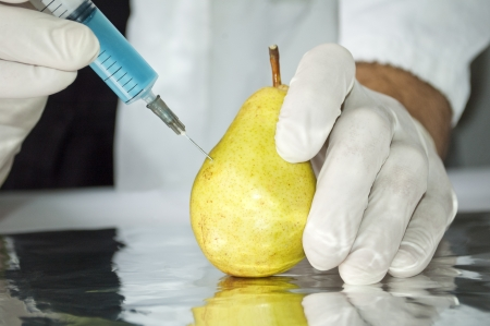 Yellow pear in genetic engineering laboratory, gmo food concept photo