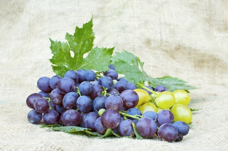 Fresh red and white grapes on vintage background photo