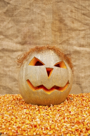 Halloween Pumpkin on corn seed Stock Photo
