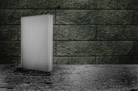 그런 지 콘크리트 벽의 앞에 책
