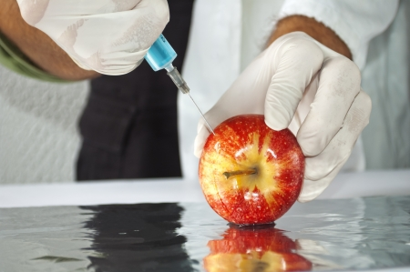 Red apple in genetic engineering laboratory, gmo food concept photo