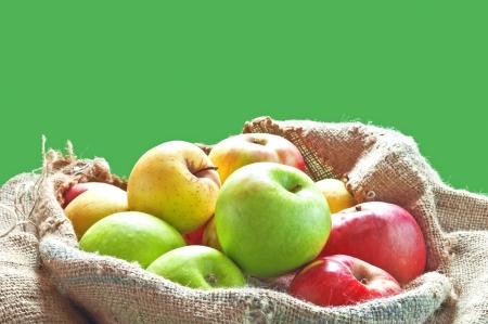 농장에서 삼 베 가방에 신선한 잘 익은 사과 스톡 사진