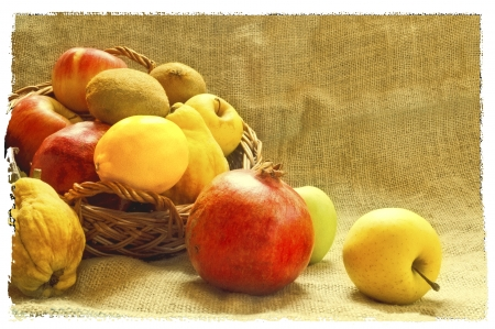 Autumn fruits,  apples, pomegranates, citrus, quince and kiwi  photo