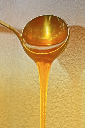 Thick sweet honey pouring from the ladle
