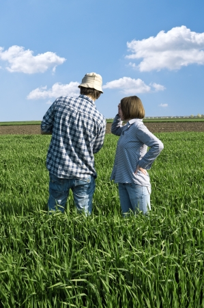 Two farmers talking in a wheat field against blue sky